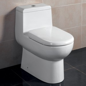 Ariel Platinum TB351M Contemporary Toilet