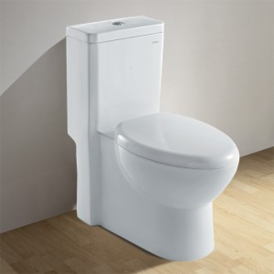 Ariel CO1037 Contemporary European Toilet with Dual Flush